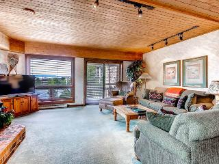 Dulany 303, Steamboat Springs