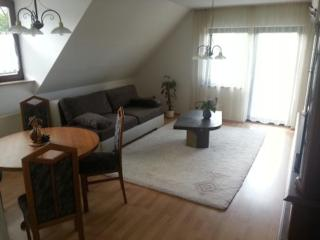 Vacation Apartment in Weimar - 904 sqft, clean, hygienic, welcoming (# 5420)