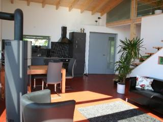 Vacation House in Gerolstein - 732 sqft, quiet, high-quality, comfortable (# 5438)
