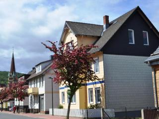 Vacation Apartment in Bad Harzburg - 614 sqft, far sighted, close to town, silent (# 5465)