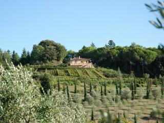 montaione country house -raffaello, Montaione