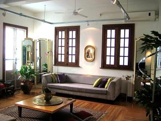 Large & Comfortable Loft in San Telmo, Buenos Aire, Buenos Aires