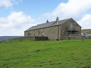 HILL TOP, pet friendly cottage with woodburner, stunnig views, rural location, in Lanehead, Weardale Ref 904213, Alston
