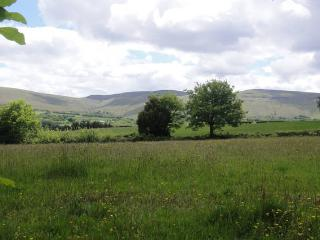 Beautiful Farmhouse, Stunning Views Brecon Beacons, Llangadog