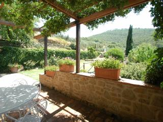 Villa Oleandro-charming rental in typical hamlet, Cortona
