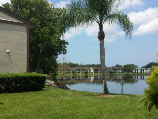 Sunshine, palm trees, and water!, Oldsmar