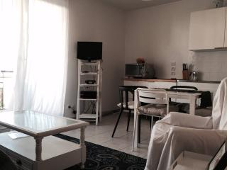 Cozy studio apartment very close to Geneva, Ferney-Voltaire