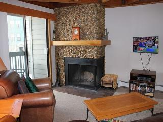 TH206F Lovely Condo w/Wifi and  Clubhouse, Silverthorne