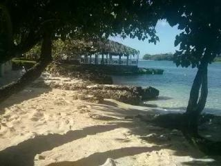 Starfish Paradise, beach front, ocean view, wifi, Negril