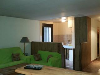 Large 3 bedrooms with ski slope view, Chantemerle