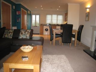 Bluebell Lodge Lakeview Holiday Cottages, Bridgwater
