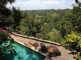 Best view in Ubud! A suite in an iconic house!