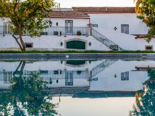 Historic house with pool for bigs families, Cano