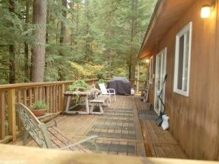 Snowline Cabin #6 - A HOME AWAY FROM HOME WITH A OUTDOOR HOT TUB with Wi-Fi, Glacier