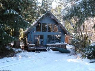 Mt Baker Rim Cbin #53 - A cozy cabin with a open fire place and outdoor hot tub., Glacier