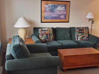 Cozy 1 bedroom with beautiful views, Whistler