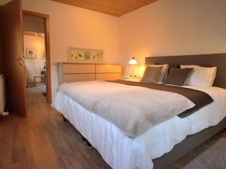 Alpine Dream Holiday - Apartment Amberg, Oetz