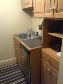 New SS sink and dishwasher with custom cabinets