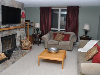 Mount Snow Trail Side Condo - 2BR - Sleeps 8, Dover