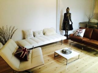 Luxury Penthouse -  City Center!!, Copenhague