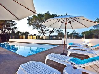Luxury Villa for 12 on the Beach with Pool, Ibiza