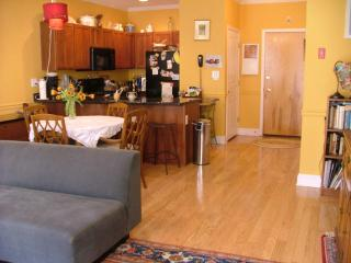 Spacious, upscale 1 bdrm sleeps 2, Hoboken