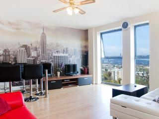 Modern 3 bedrooms flat, London Victoria 30 minutes, Londres