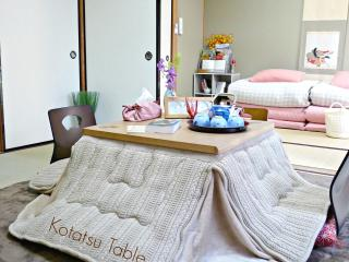 New Open! Sakura River Side APT, Kyoto
