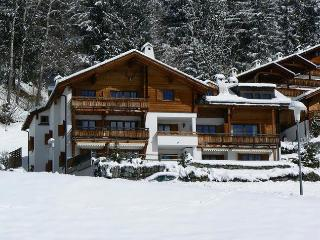 Stunning apartment perfect for winter and summer, Laax