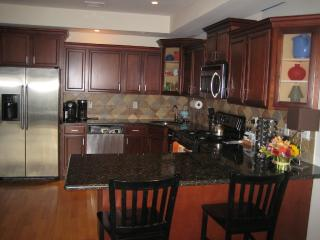 Luxury 3 Bedroom/2Bath Apt Overlooks New York City, Union City