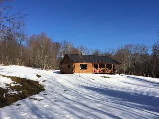 Log Cabin, 4 BR / 2 Bath Minutes to Mount Snow!, Dover