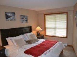 Ski in Ski out, Newly rennovated unit, Whistler