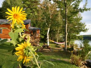 Luxury log home 12'ft from lake with amazing views, Bridgton