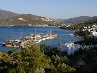 Bodrum Holiday Villa with Private Pool 2046, Torba