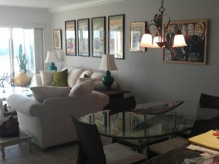 A truely nice condo! Riverfront, Downtown, Quiet!, Naples