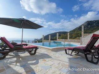 Luxury twin villas with pool Budva