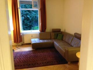Two br apartment in city centre near Rhine, Basileia