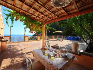 Huge terrace, sea view, wonderful villa - V715, Positano