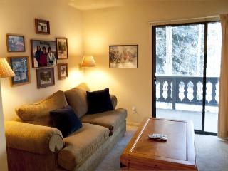 Edelweiss #121B, Warm Springs - economical one bedroom that sleeps 4 across from lifts, Ketchum