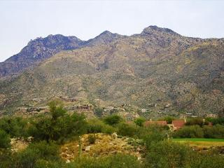 Elegantly appointed, fully furnished condo with stunning mountain views, Tucson