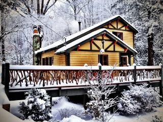 The Black Bear Lodge at Black Mountain, Asheville