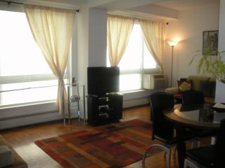 Lux,750sq,Bdwy/TimesSq(7) November $150 !, Nueva York