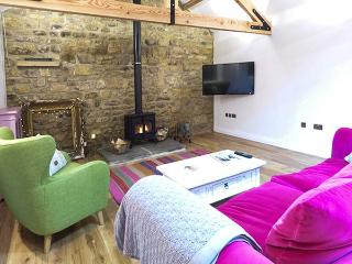 THE COWSHED luxury single-storey barn conversion, character features, en-suite, woodburner, in Horsley near Corbridge, Ref 30884, Wylam
