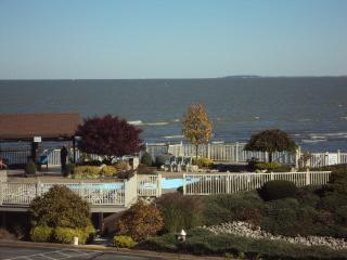 3 Bed. Condo With Nice lake view!, Port Clinton