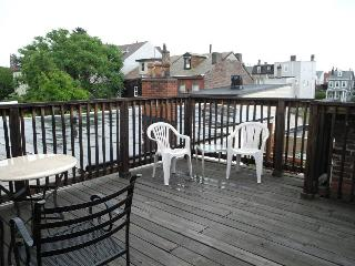 HUGE 3 BR 2 Bath Entire Property w Rooftop Deck, Pittsburgh