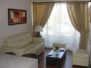 Fully furnished cozy apartment, near of everything, Santiago