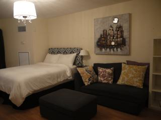 Furnished Studio in central downtown-Across Eaton, Toronto