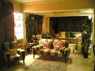 Fully furnished apartment for rent in cairo egypt, El Cairo