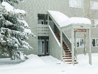 Cozy One Bedroom in Jackson Hole. Seasonal or Vacation rentals available!, Wilson