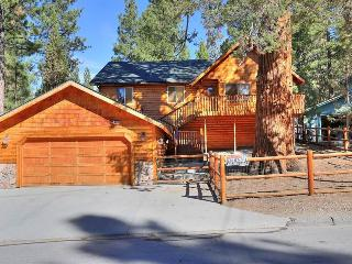 Hillen Dale Haus ($199 SPECIAL) #1515, Big Bear City